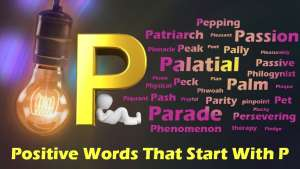 P 1 300x169 - List Of Positive Words That Starts With P