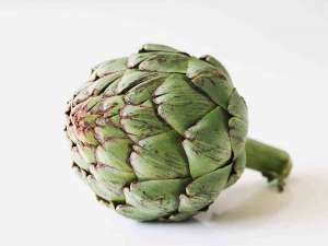 growing artichokes 300x225 - The Ultimate Guide To Growing artichokes