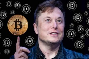 Elon Musk Became the Biggest Influencer in the Cryptocurrency World scaled 2 300x197 - How Elon Musk Became the Biggest Influencer in the Cryptocurrency World